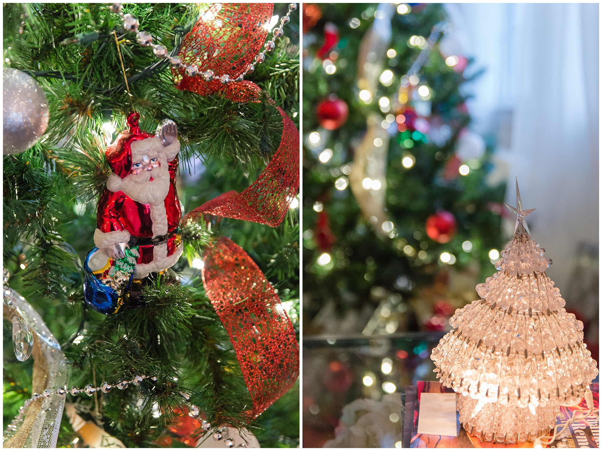 Christmas decorations_0020.jpg