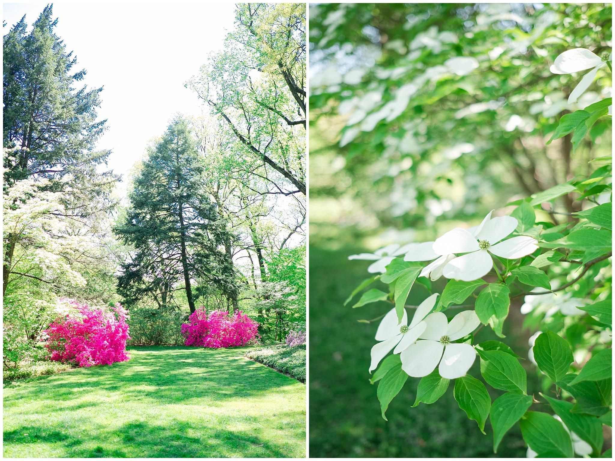 Arboretum_0002.jpg