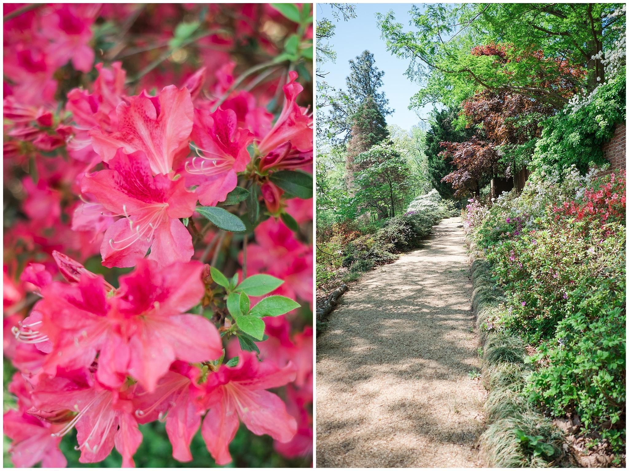Arboretum_0014.jpg
