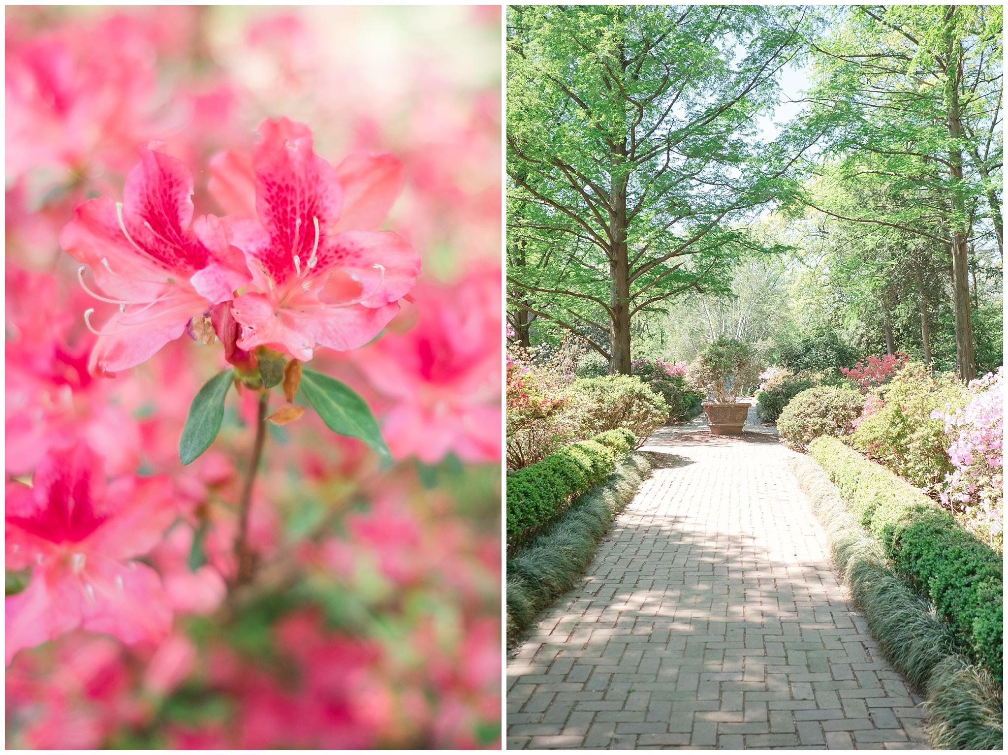 Arboretum_0016.jpg