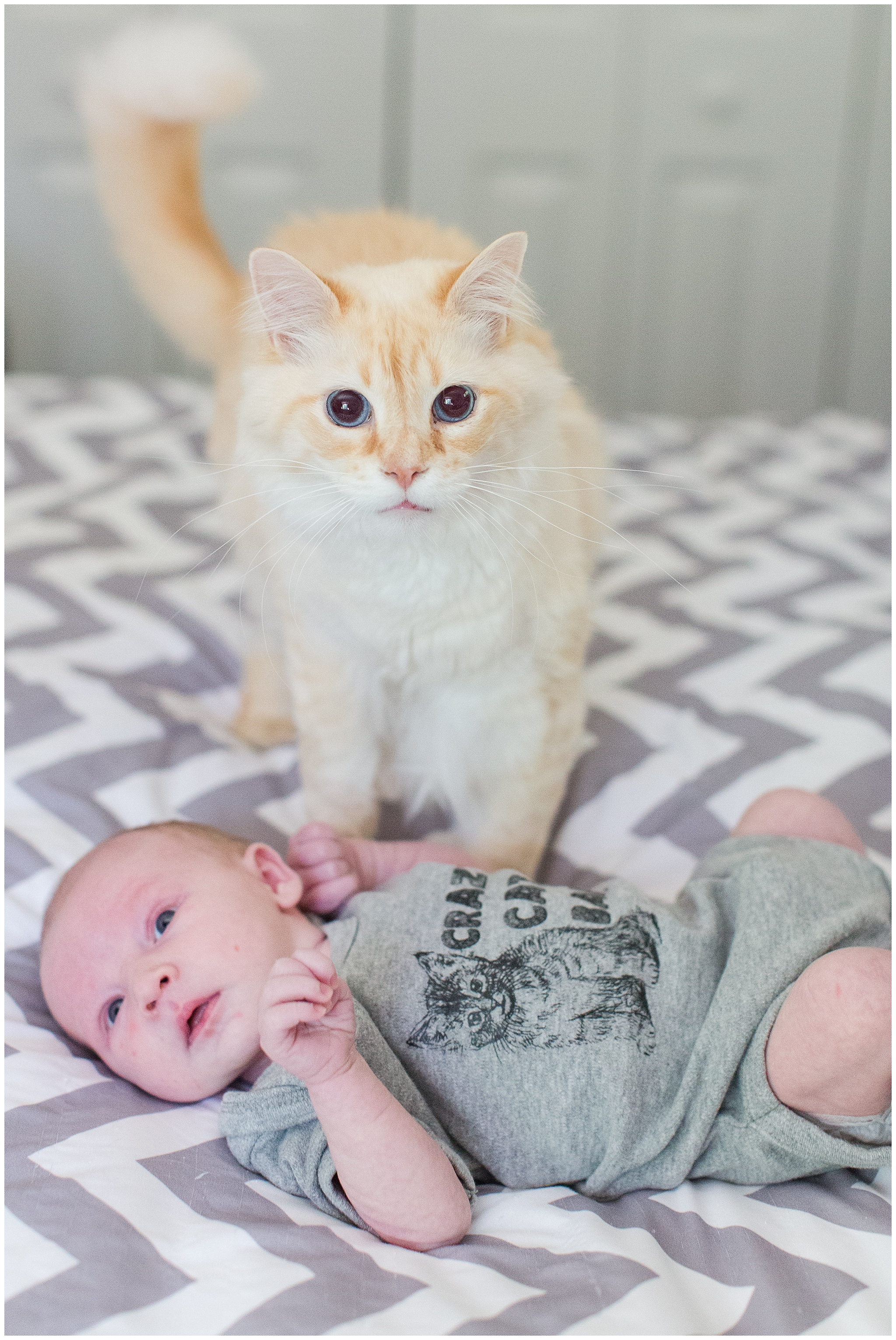 Family_newborn_Leonard_0021.jpg