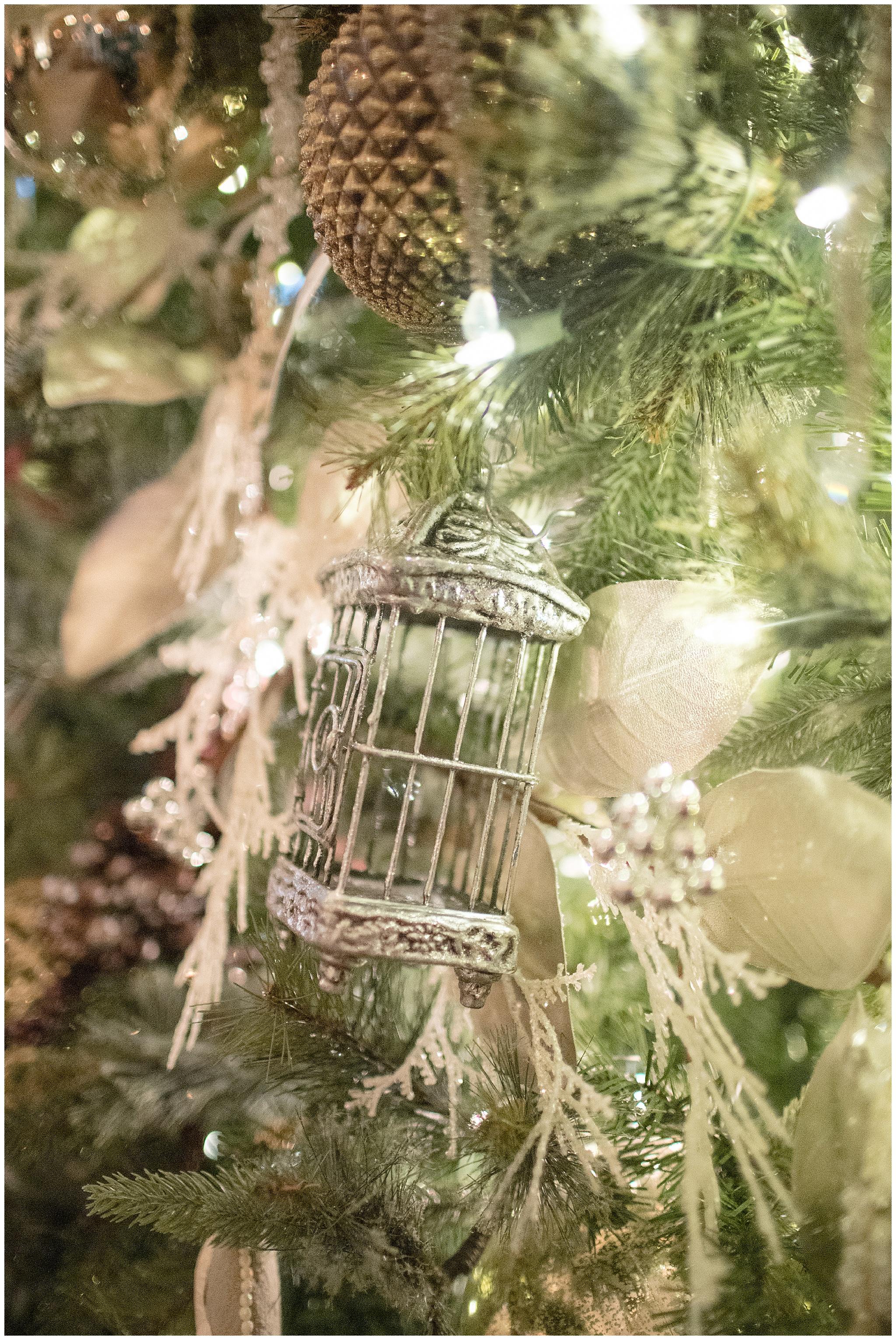 Christmas_week_0014.jpg