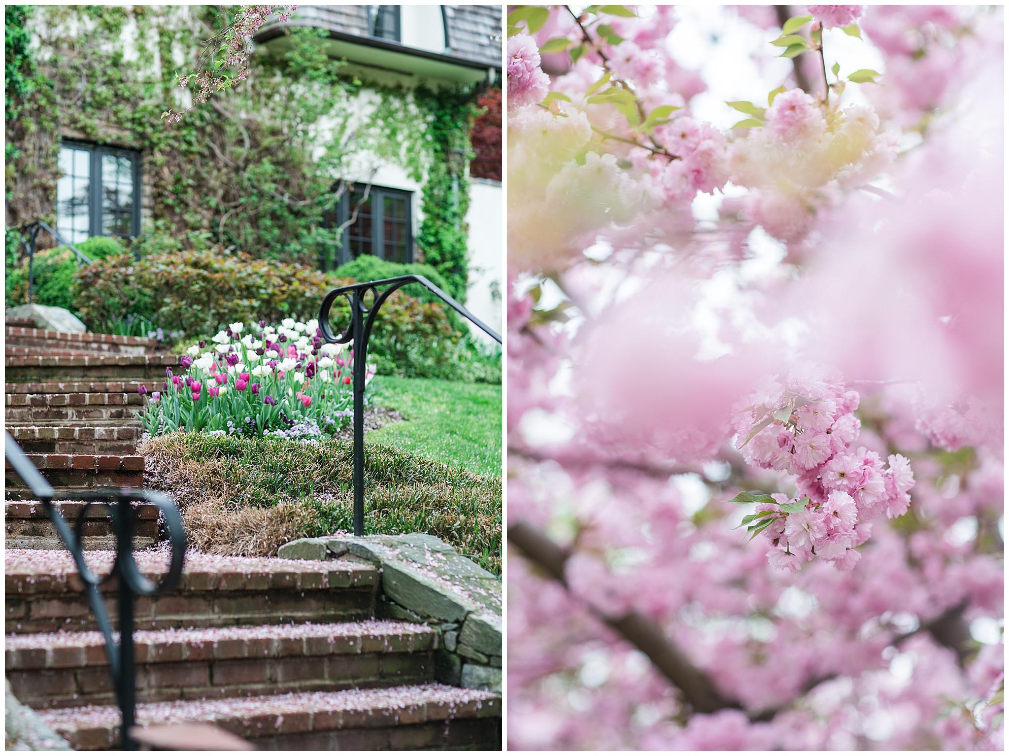 SpringWalk_0043.jpg