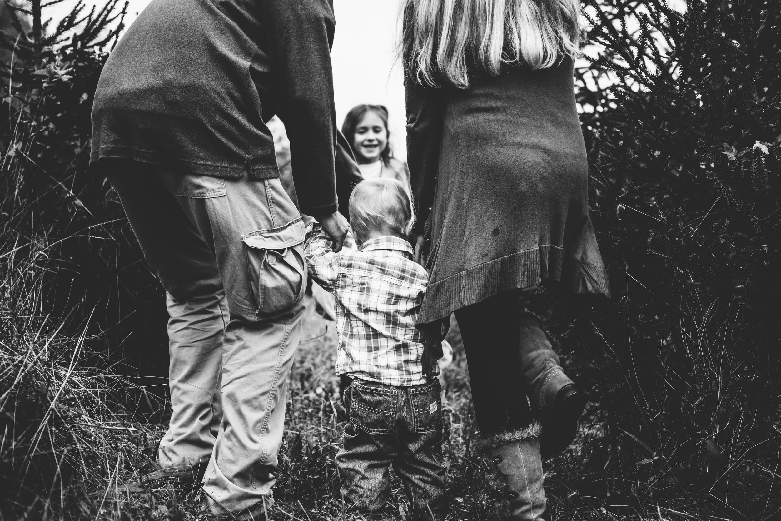 Great Falls Virginia Family Lifestyle Mini Photographer