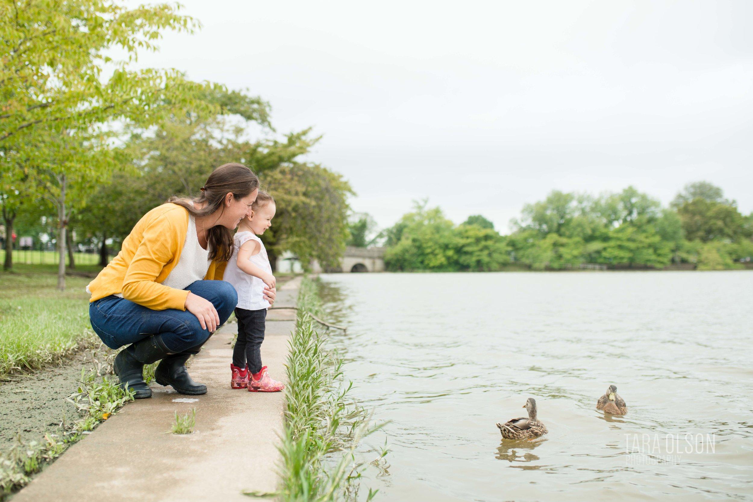 2018 Fall Macon - Tara Olson Photography - DC Tidal Basin Lifestyle Family Photographer -1450.jpg