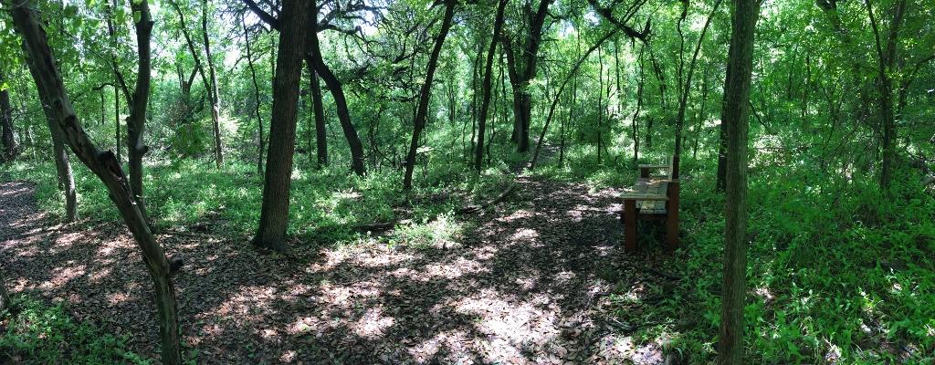 Great Oak Trail at Brigets Trail (1024x400).jpg