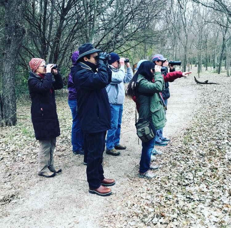 Adult - Adult programming informs both novice and experienced environmentalists on topics related to the Sanctuary. Offerings include workshops, films, and walks on topics ranging from birding to cultural history.Click on the image to learn more.