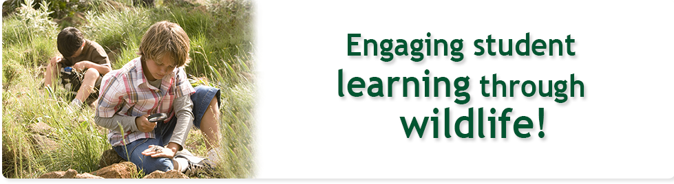 engaging student learning photo with tagline project wild.png