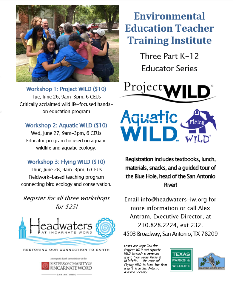 summer_institute_flyer_in_png (002).png