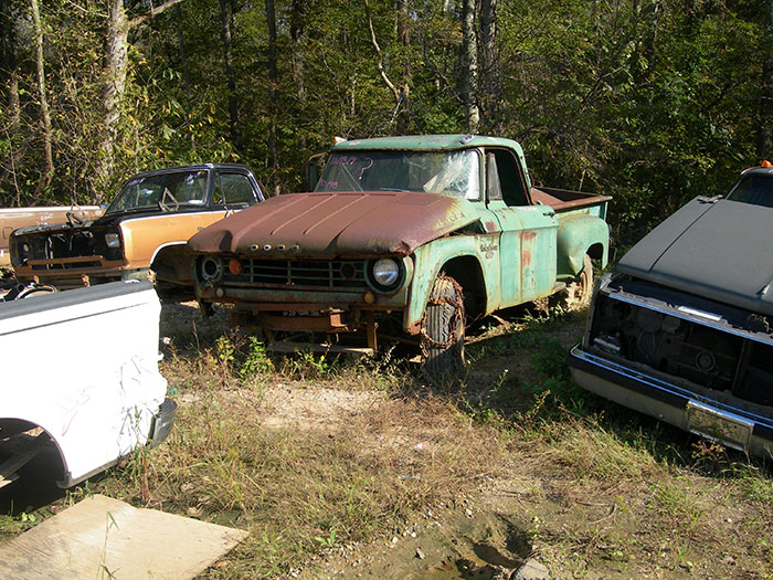 There are several Dodge trucks in the back of the yard, including this 1967 D200 truck.