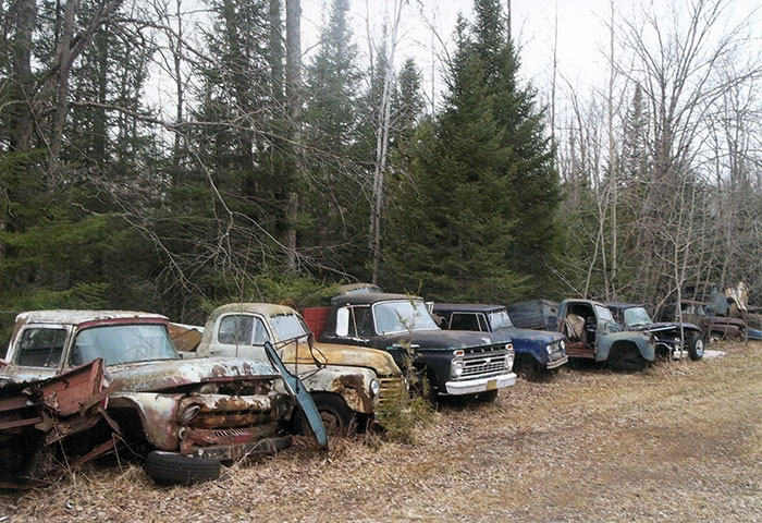 Here we see a whole row of vintage trucks representing a wide range of years.