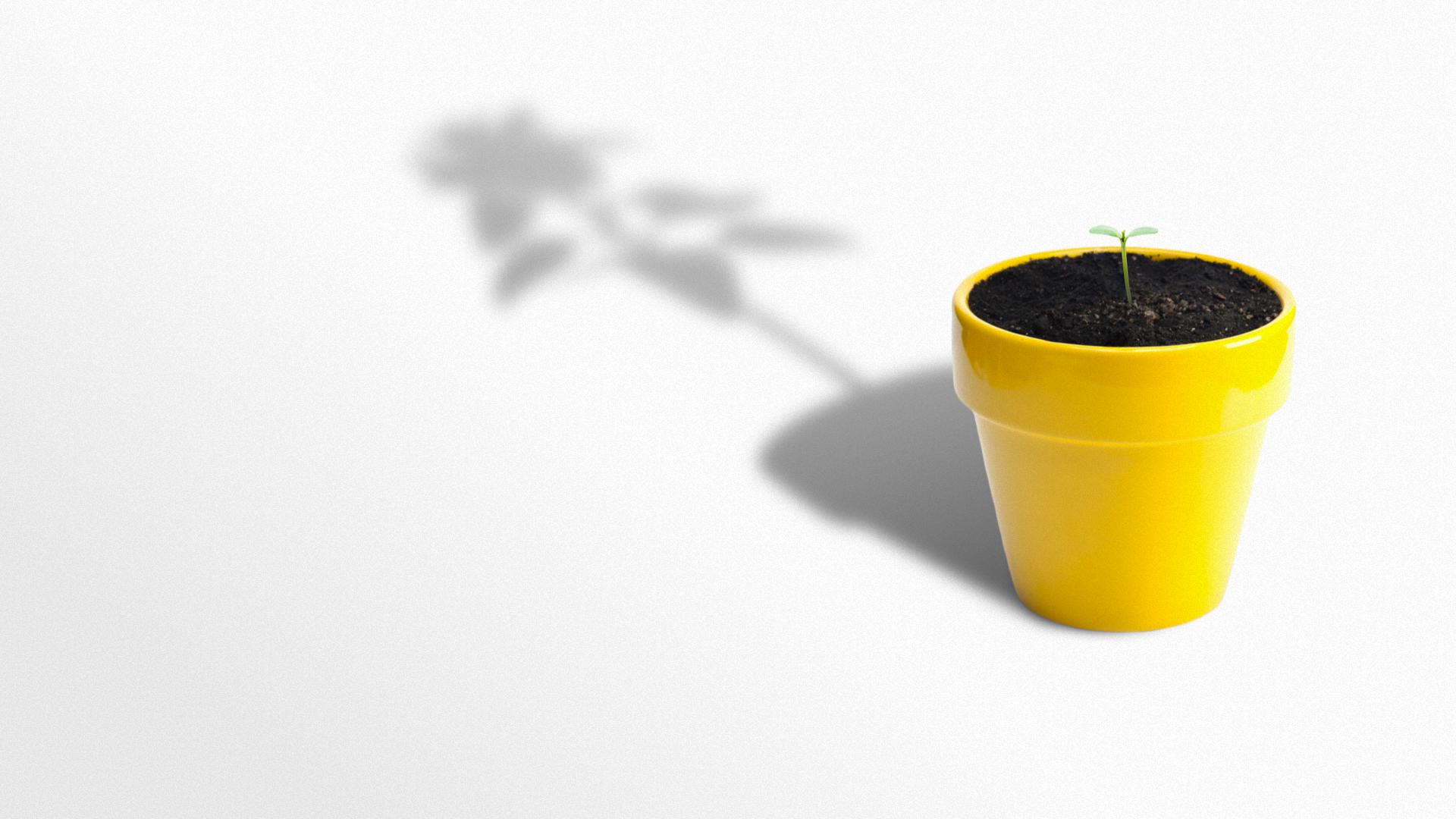 Et inbound marketing- og PR-byrå som hjelper deg å vokse -