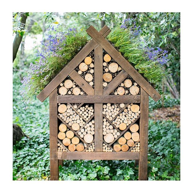 """POLLINATOR BEE APIARY 