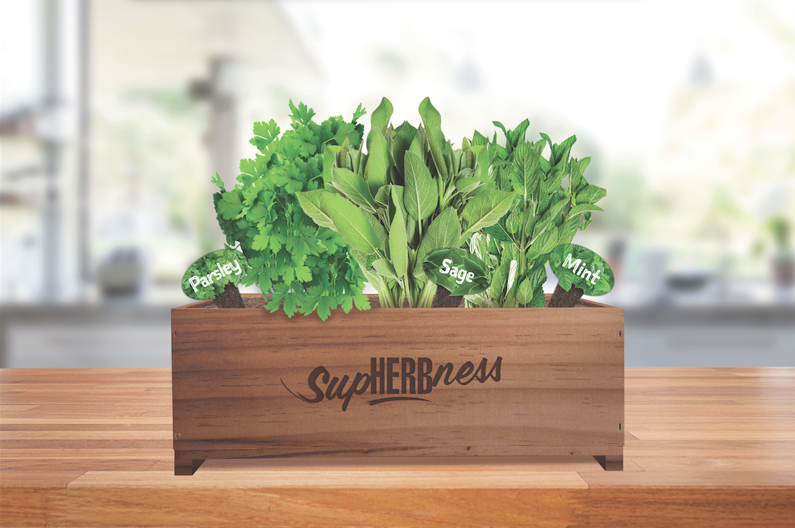 Thompsons-Herb-Garden.png