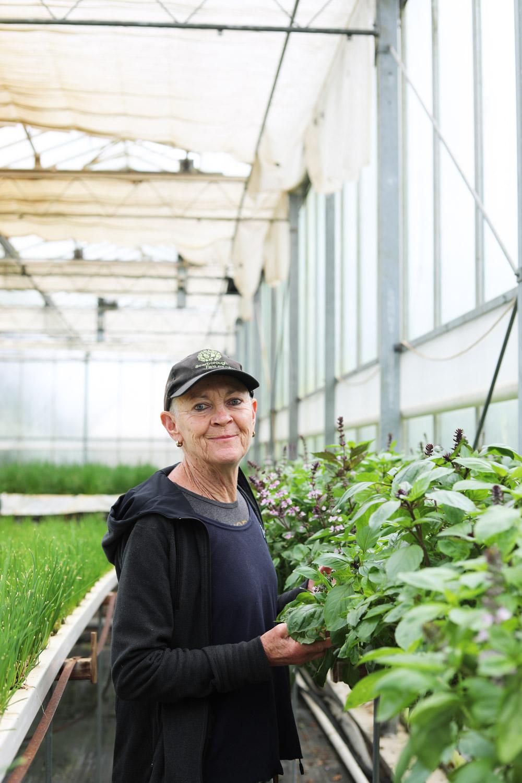 Scarborough-Fare-Herbs-30.jpg