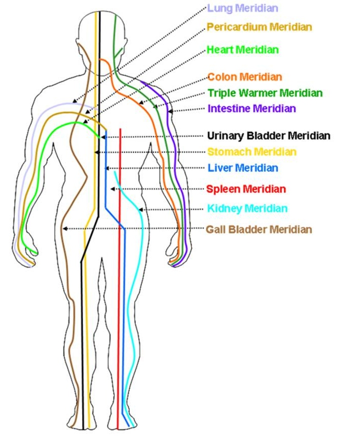 Source: http://alternativeresourcesdirectory.com/news/what-are-the-meridians
