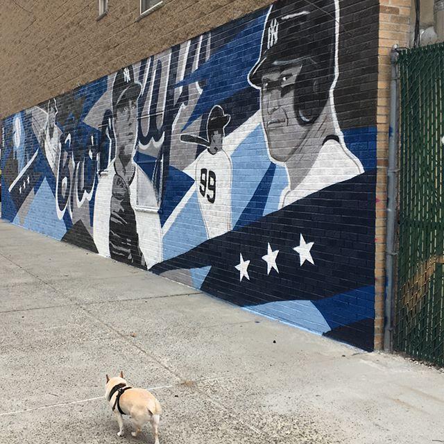 #brooklyn #baseball #yankees #newwall #takeapicture #jcbknyc #like