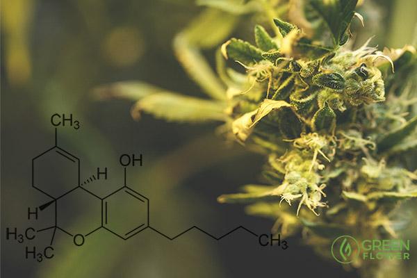 8 Amazing Benefits of THC