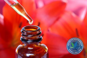 Top 5 Benefits of Medical Cannabis Tinctures