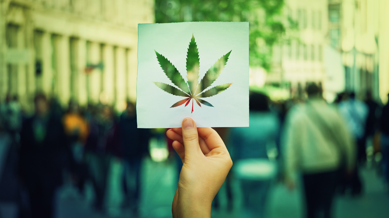 cannabis-advertising-tips.png