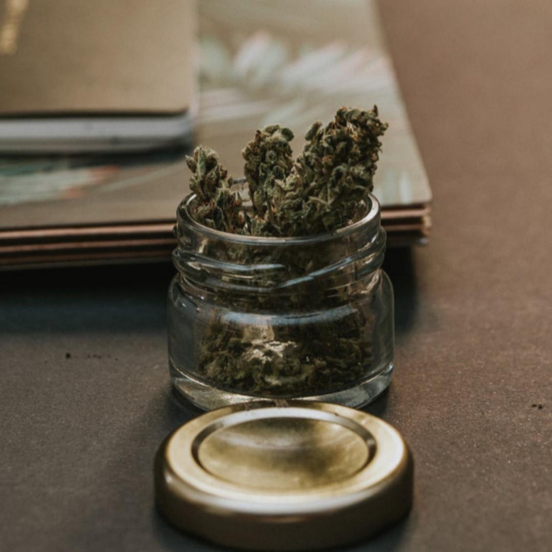 cannabis-marketing-rachel-garland.png