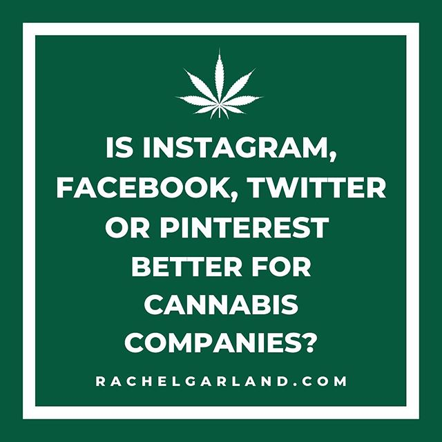 Is Instagram, Facebook, Twitter, or Pinterest Better for Cannabis Companies?  All of the above. Ideally, you want to stay active on as many platforms as possible.🤳💚Think about it. Each time you share something, you increase the likelihood someone comes into contact with your business.📣👥✨The more places you're sharing things, the wider your reach.  Now, that being said, you also need to  be strategic. Where is your target audience spending the most time at?🎯🤔These are the places you should be focusing the most on.🌱I recommend a minimum of 3 social media channels.  Remember, you do not want to put all of your eggs into one basket.🥚🧺What if your Instagram or Facebook was gone tomorrow?  Hence why diversifying your approach is so important.♻️Social media is no longer an option for businesses, it's a necessity.🔥🗓🔥Consistently sharing great content across channels will grow your impact, influence, and income.  Don't have time for social media?🙋♂️🌿🙋♀️Let's connect! Send me a DM or email Info@RachelGarland.com to learn more about my 420 Marketing Services to grow your CBD or Cannabis business. . . . . . . . #cannabidiol #weedmaps #cbd #dispensary #cannabiscommunity #cbdheals #cannabis #cbdvape #cannabisculture #hemp #cbdstore #cbdproducts #cbdcommunity #hemphealth #cbdoilbenefits #coloradocannabis #hempproducts #cbdforthepeople #cannabisbusiness #extracts #hempoil #cbdskincare #dispensarylife #cbdoil #concentrates #maryjane #cbdbenefits #californiacannabis
