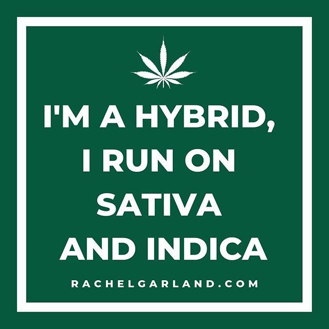 I'm a Hybrid, I Run On Sativa & Indica 🌿♊️💨 #puffpuffpass . . . . . .  #cannabis #cannabiscommunity #hybird #cannabis420 #indica #cannabisculture #sativa #cannabliss #weedmaps #cannasseur #dispensary #cannabinoids #cannaculture #cannabisdaily #cannabisindustry #cannapeople #cannalife #cannabisclub #cannabispics #420life #420culture #420everyday #cannabisgrow #cannabisoil #cannabislife #cananpreneur #cannabiscures #420somewhere