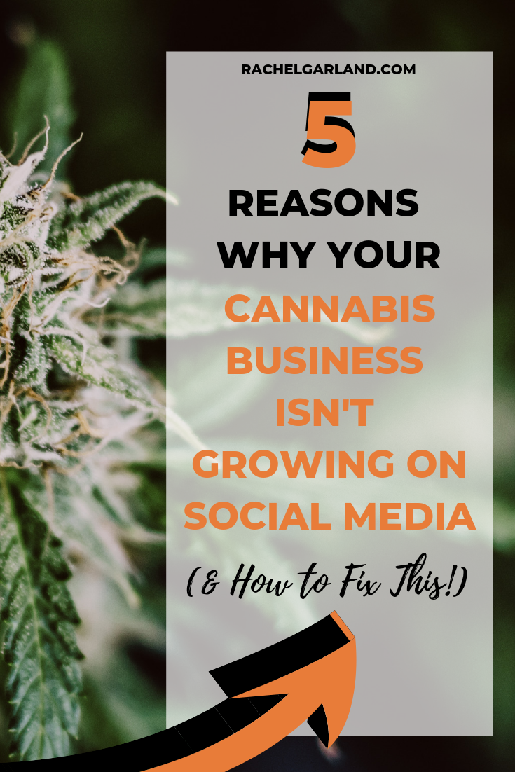 cannabis-social-media-tips).png