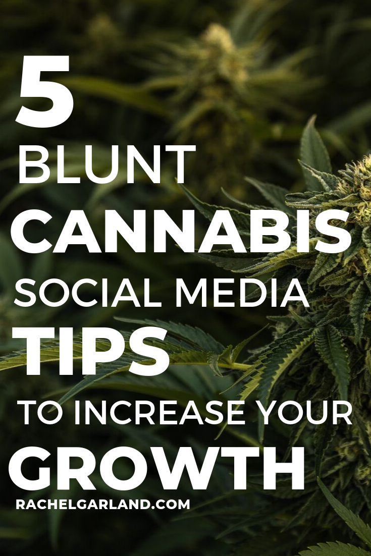 blunt-cannabis-social-media-tips.png