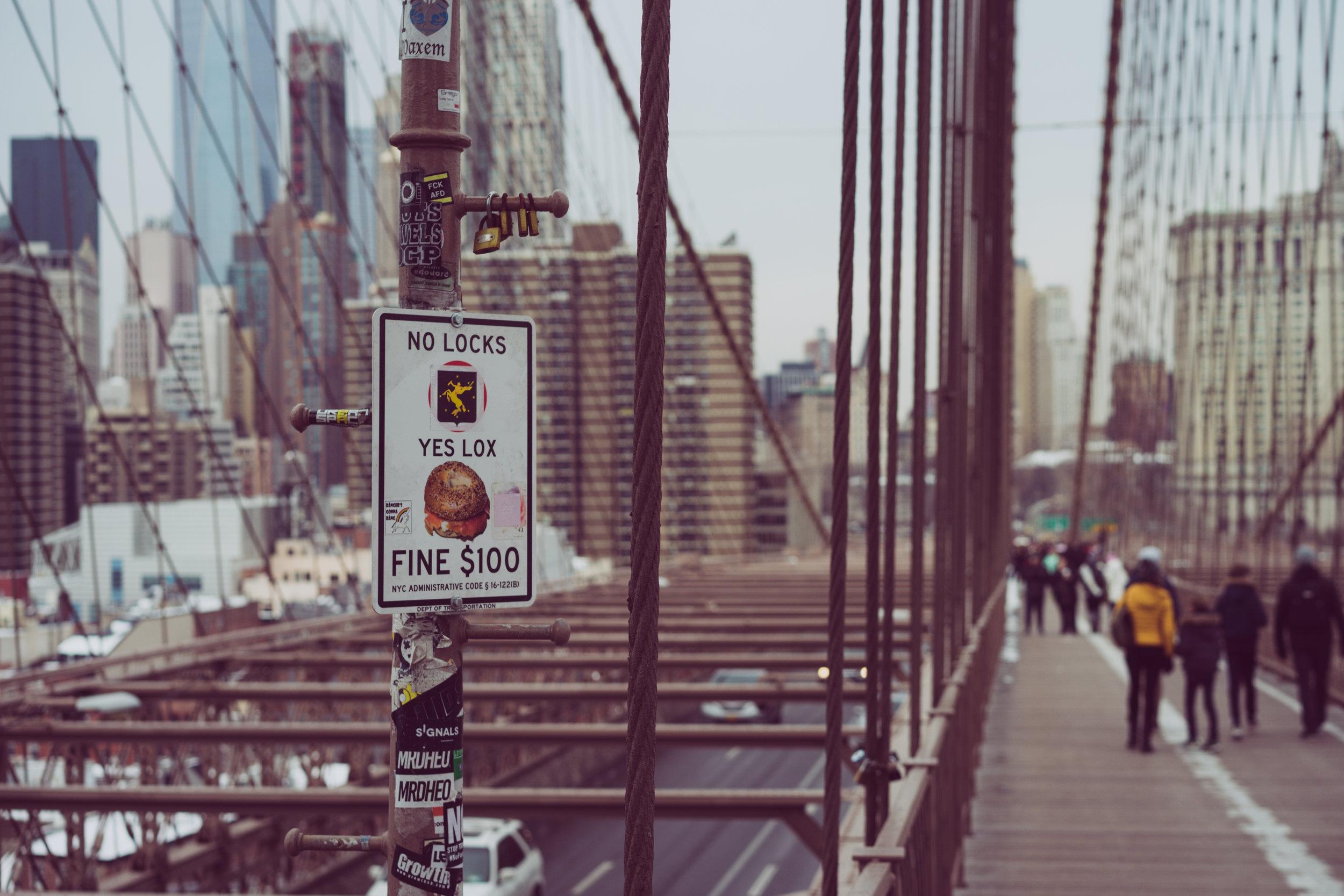 Bridge Humor