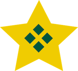 BPI Star_ART 250.jpg
