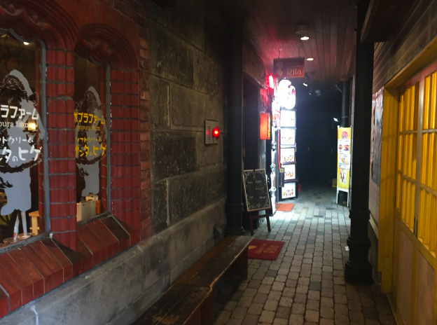 Otaru street