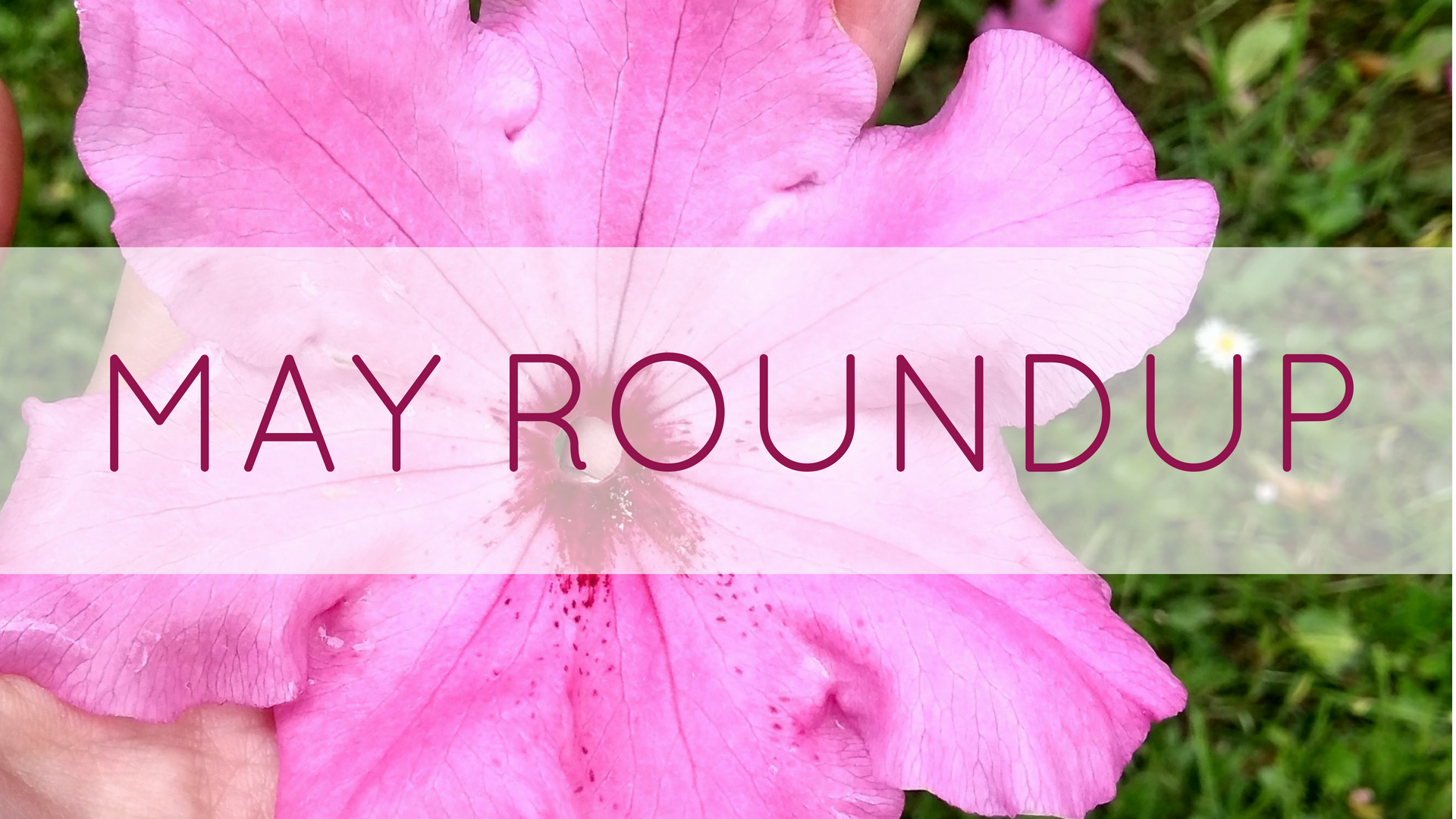Add May Roundup.jpg