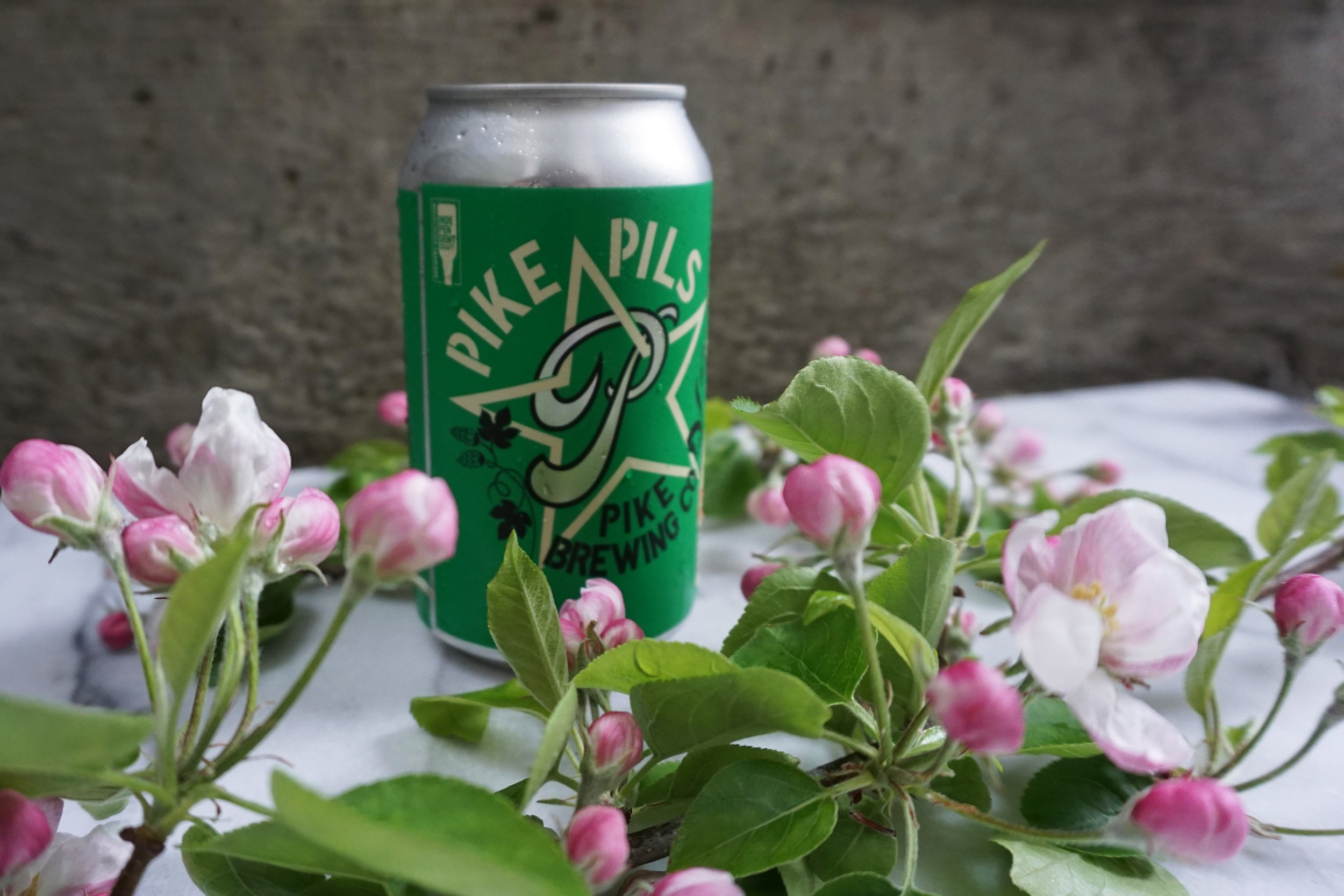 Pike Pils can with apple blossoms