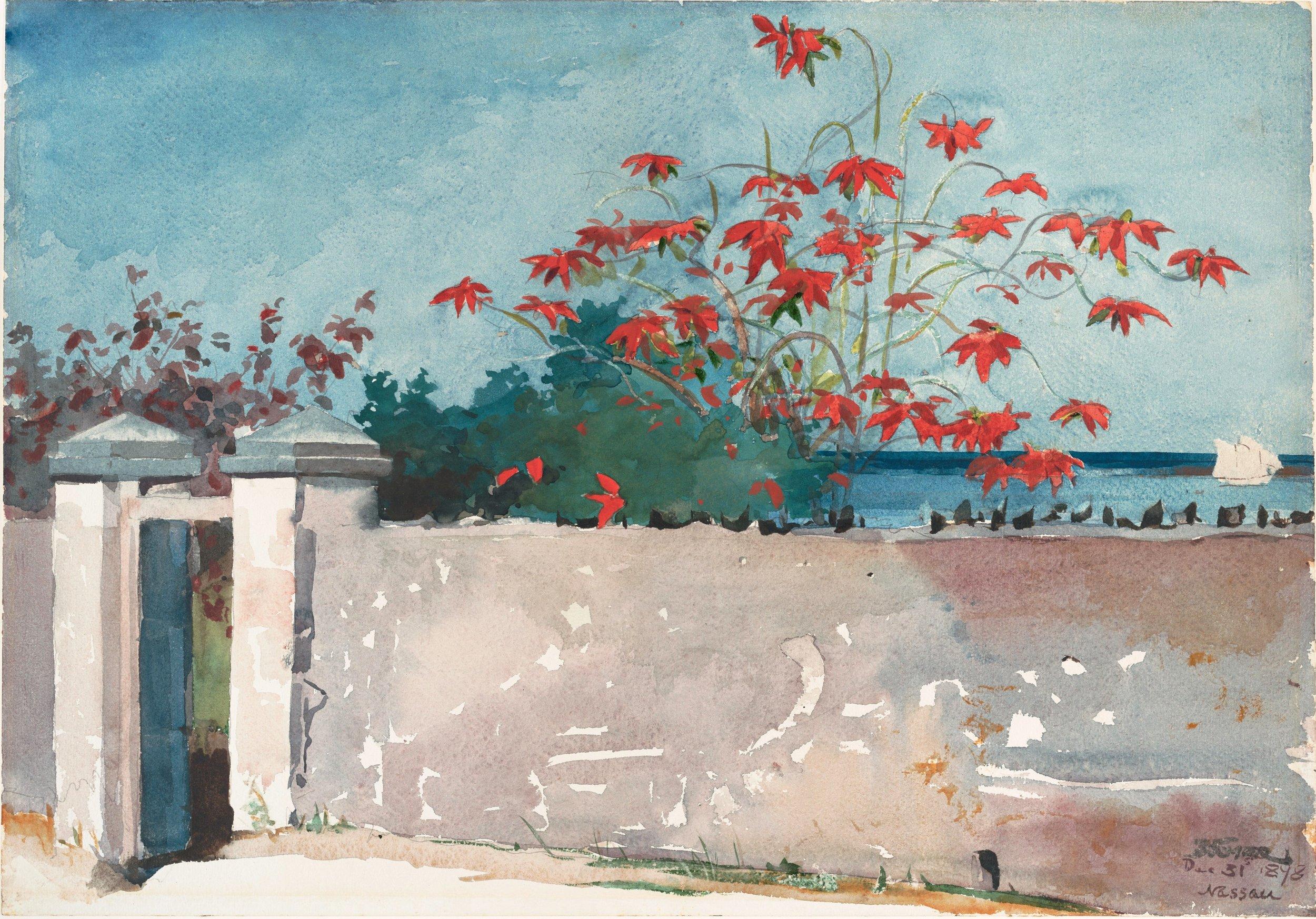 Winslow_Homer_-_A_Wall,_Nassau.jpg