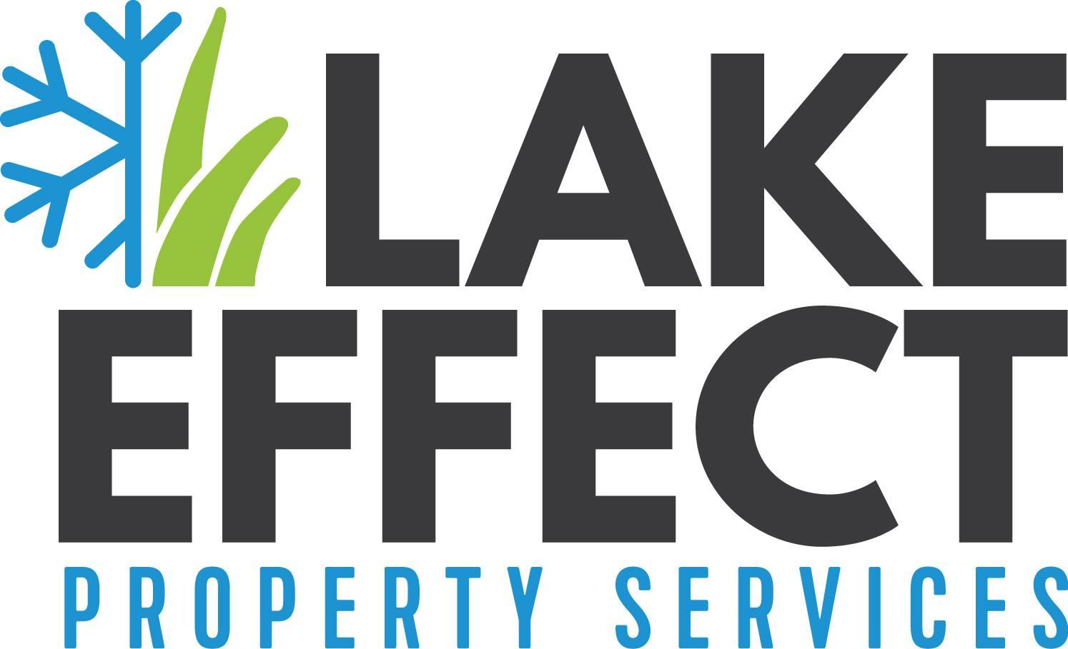 lake effect whole logo.jpg
