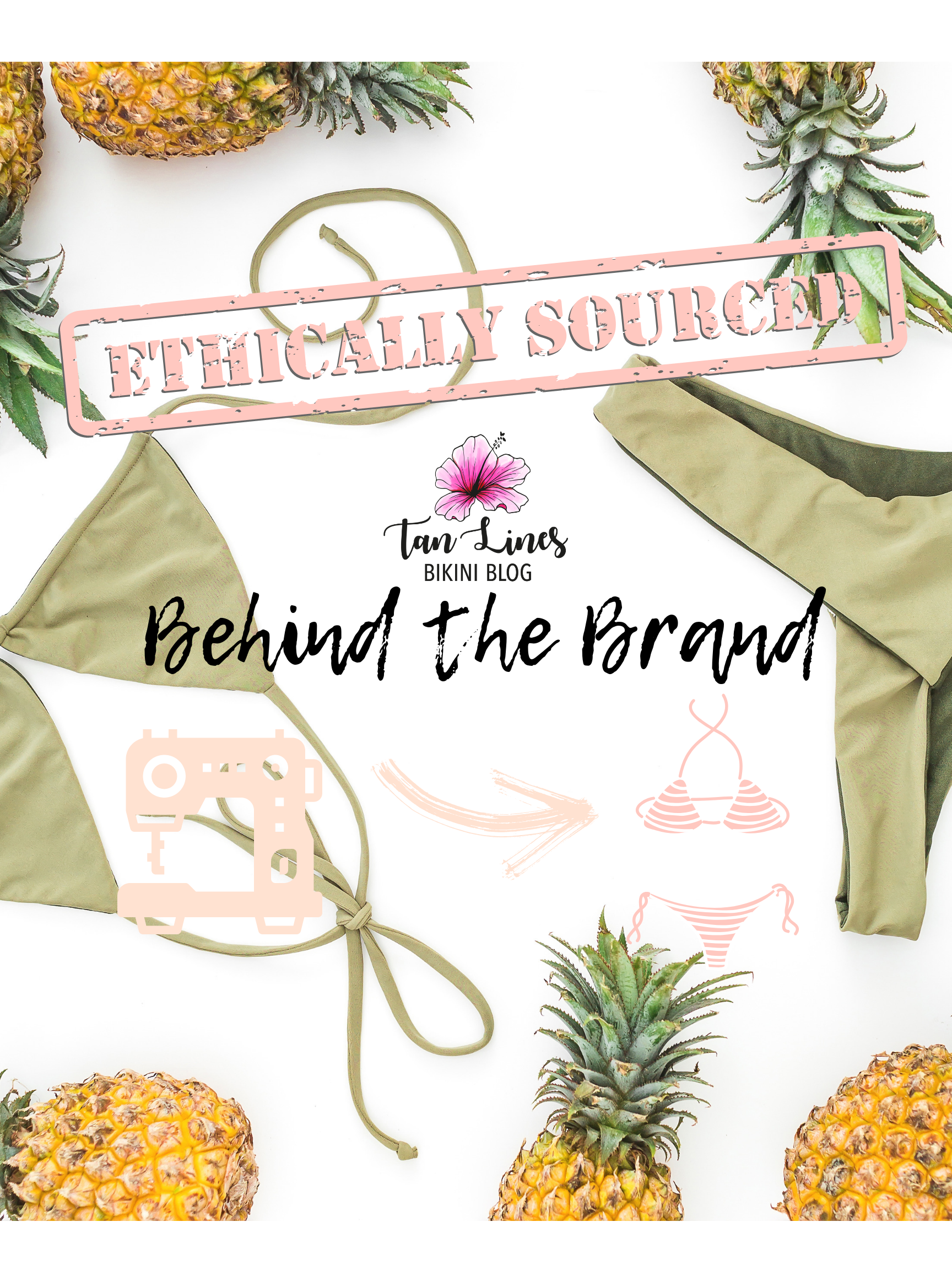 """New Blog Series Intro - Read this blog post to find out everything you need to know about my upcoming blog series """"Behind the Brand."""""""