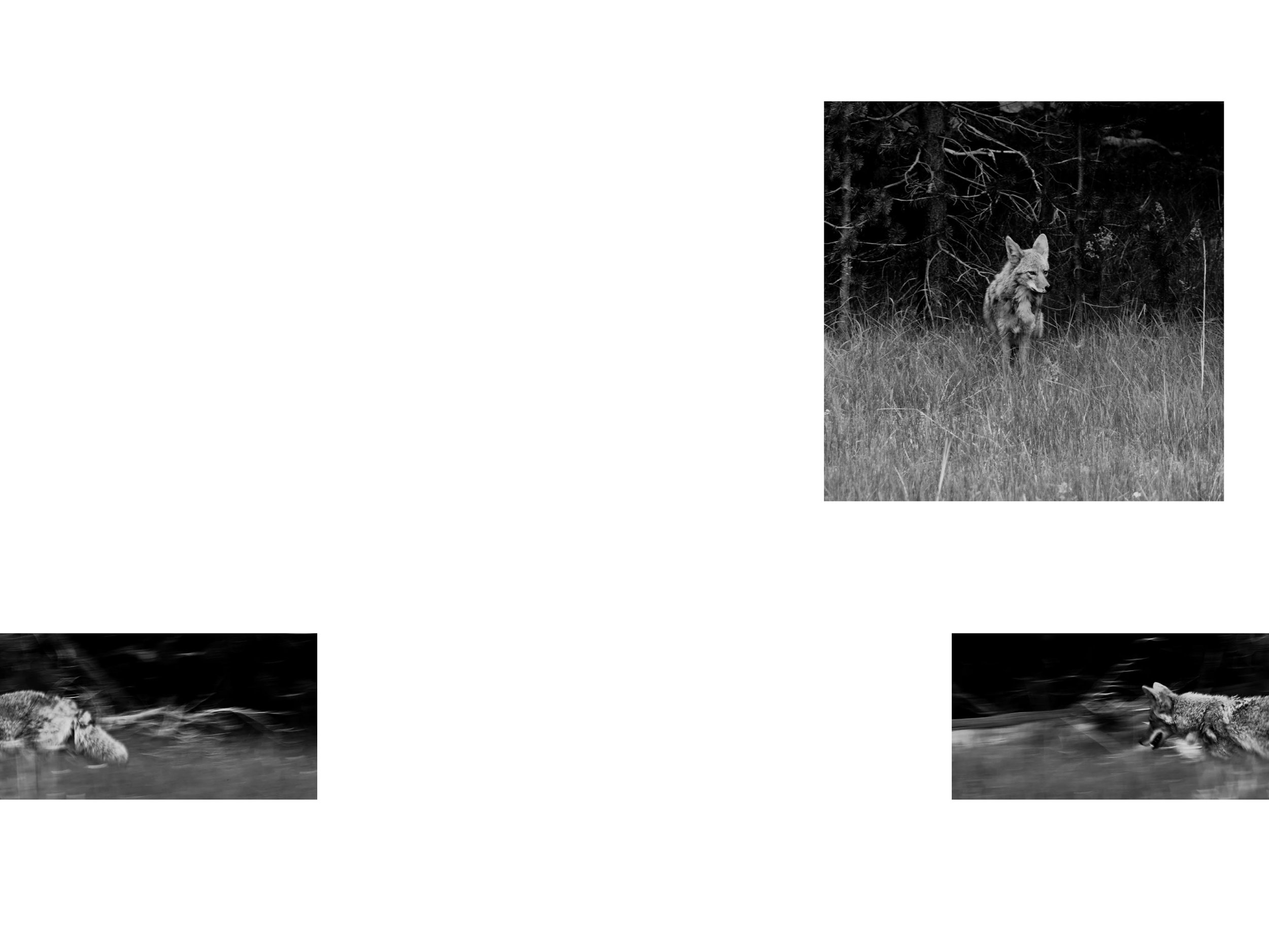 web-page-2.jpg