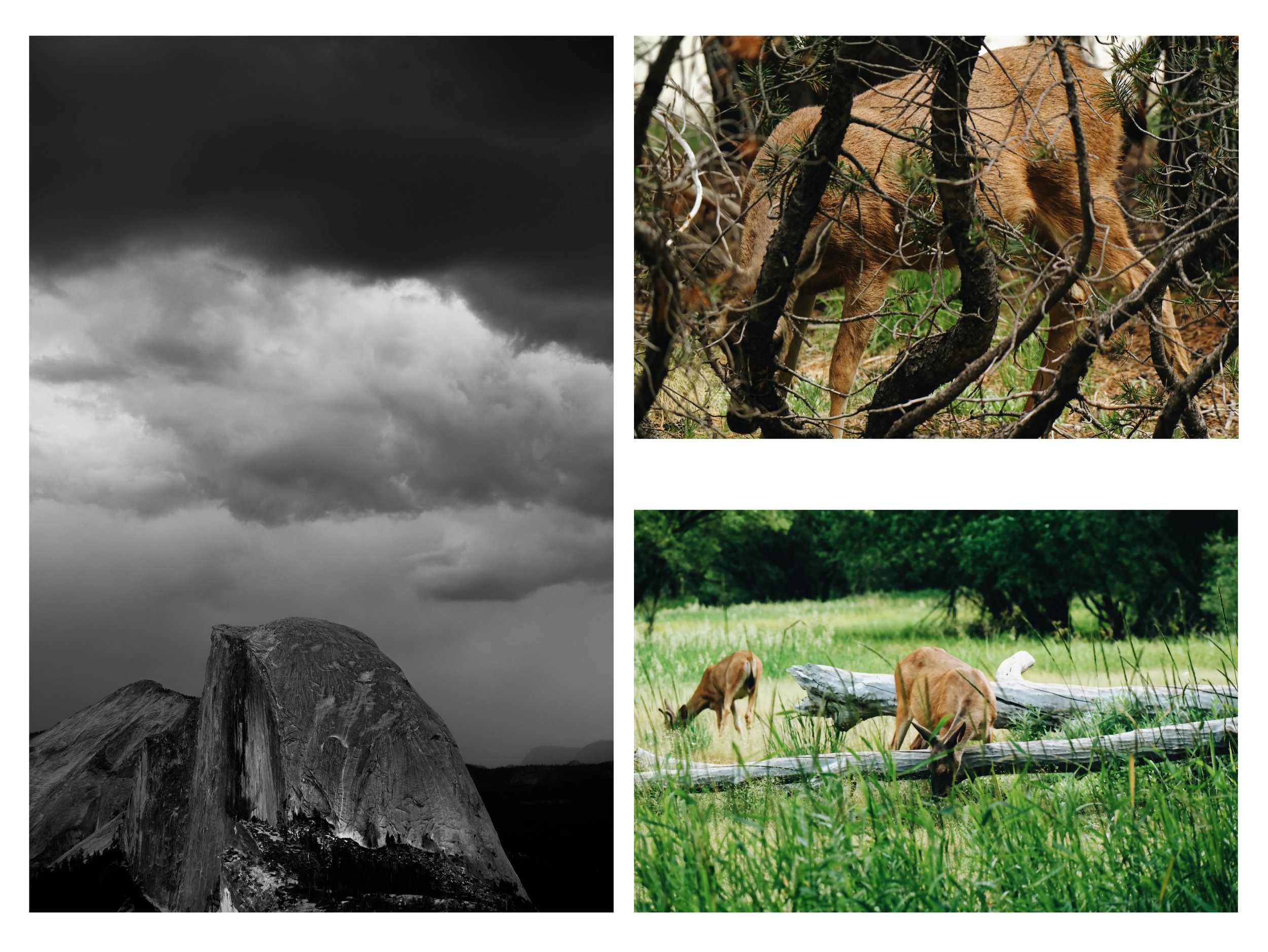landscape-page-3.jpg