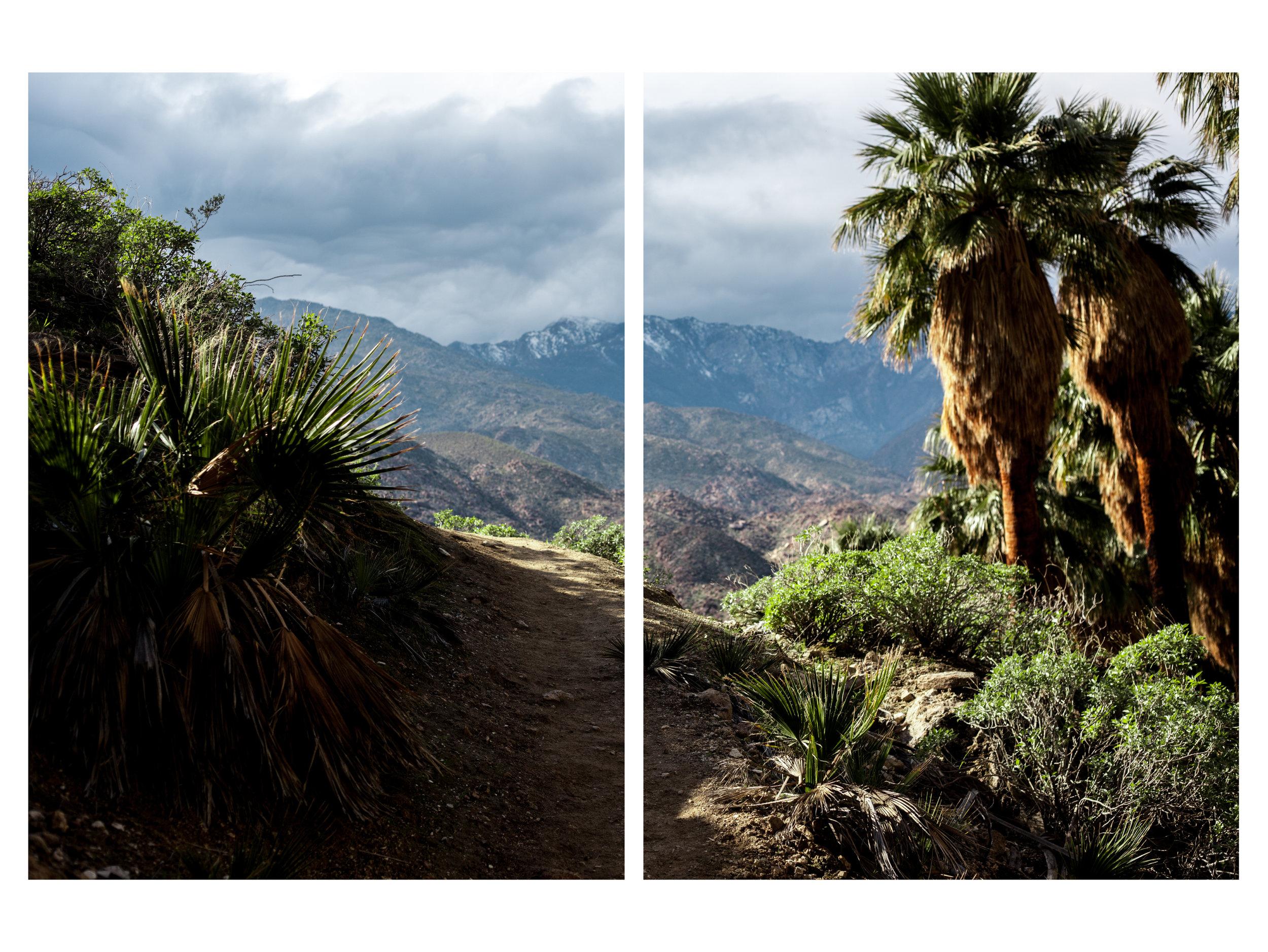 landscape-portrait-5.jpg