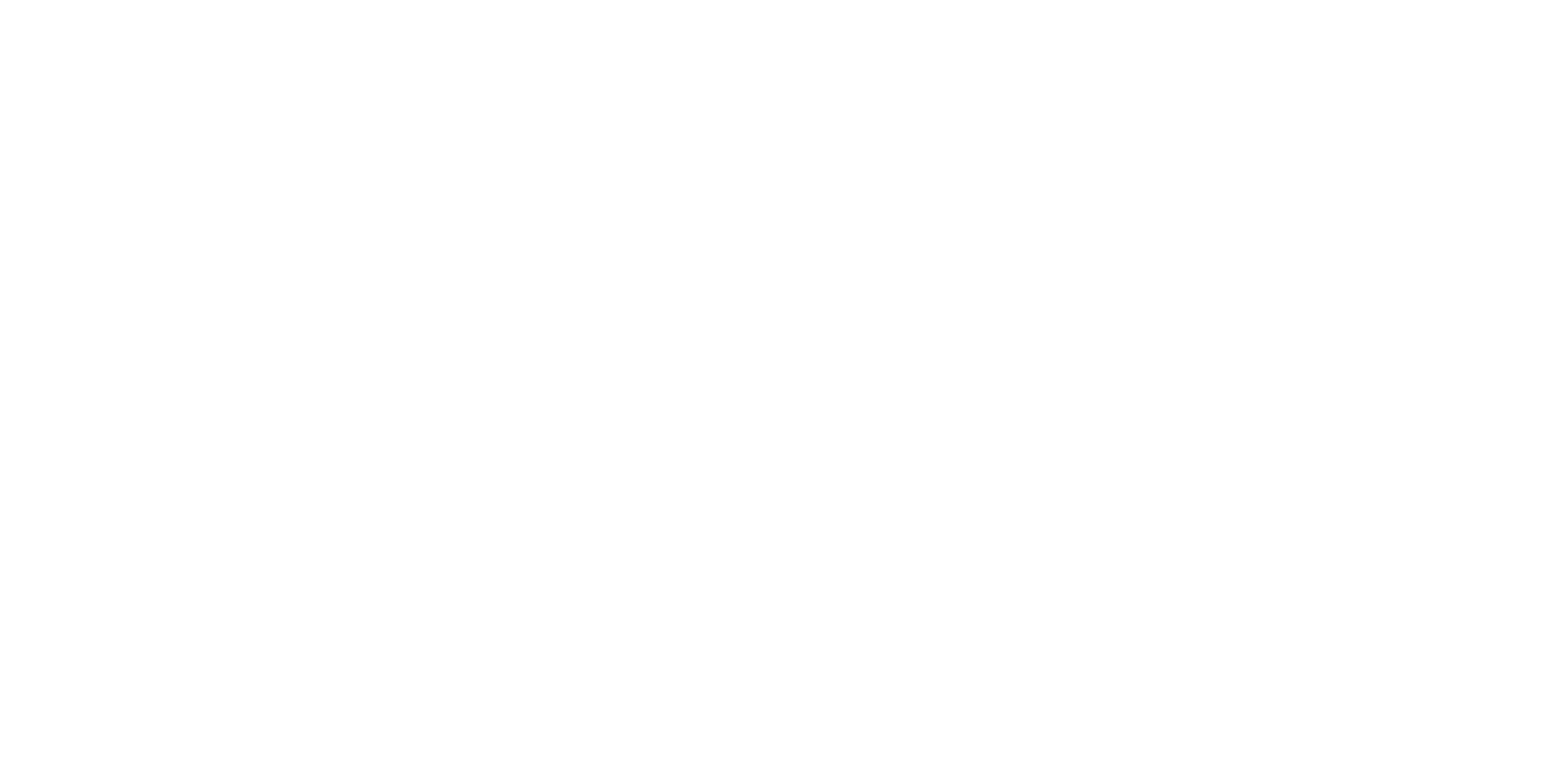shawn james - logo - sept 2018 01 REVERSE.png