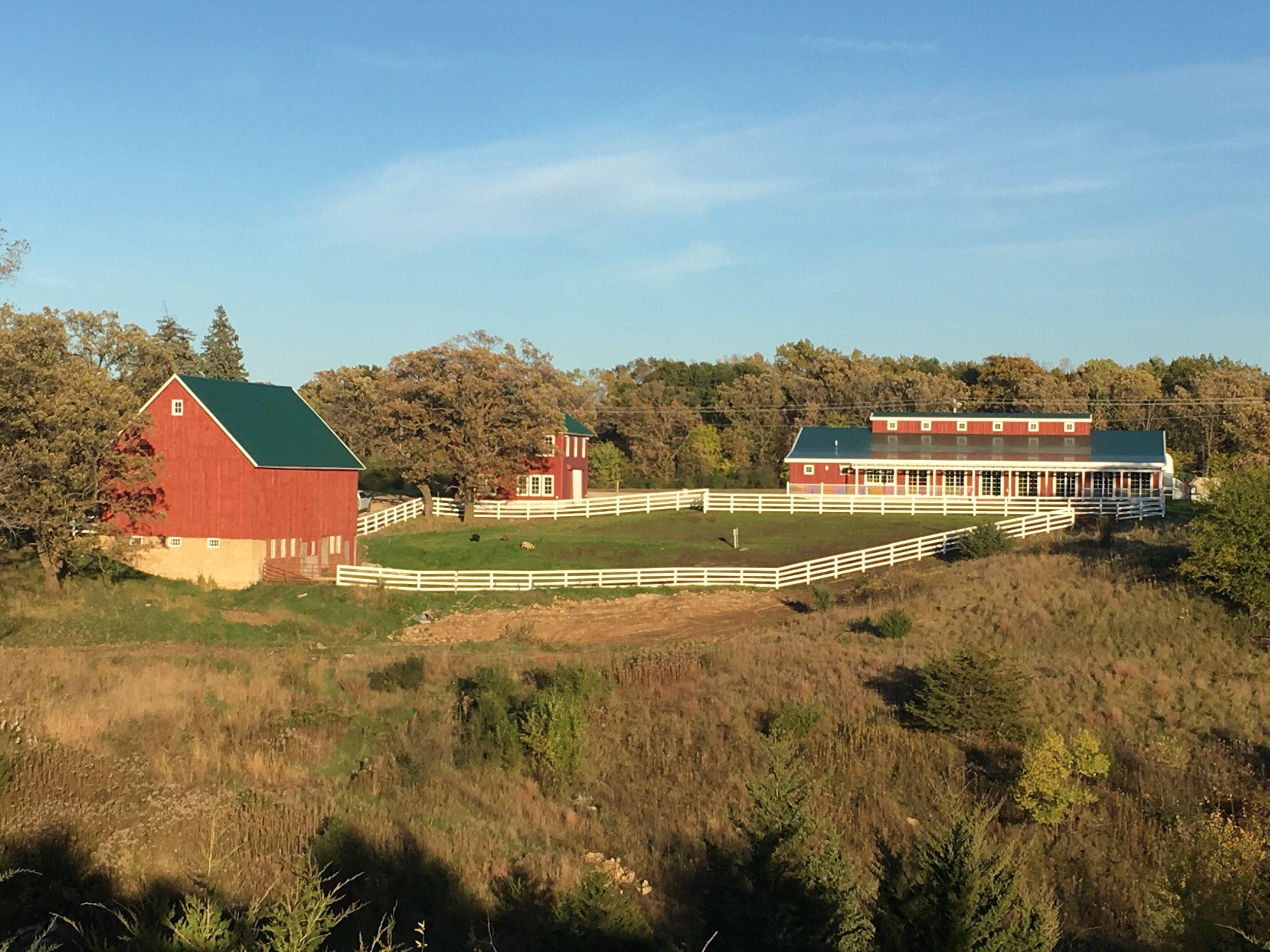 Wide Angle Farm.jpg