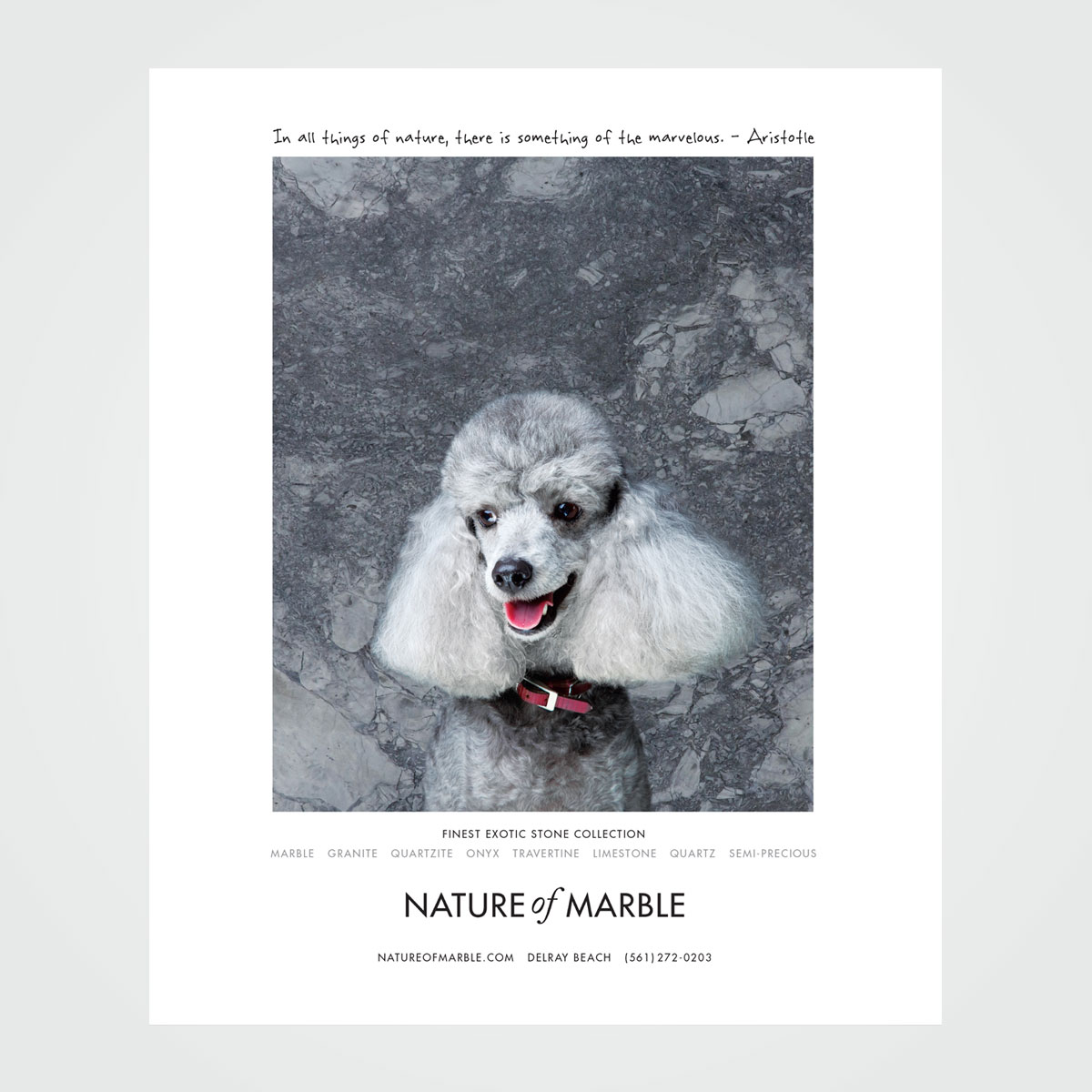 """Magazine ad design for Nature of Marble, Delray Beach, FL - part of a """"beautiful animals"""" ad series"""