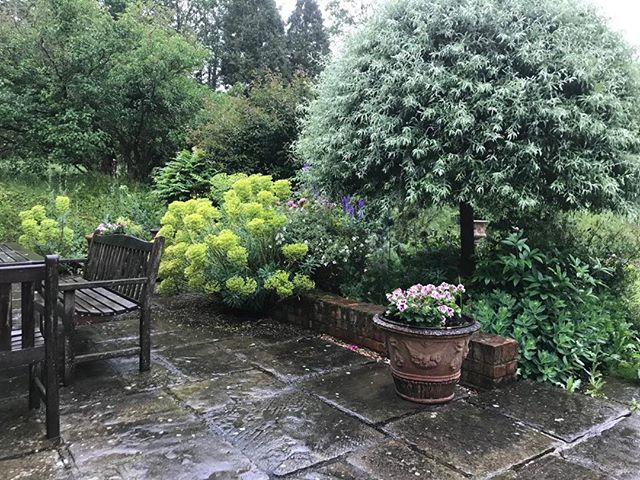 Monday morning! #rainyday #monday #gardenneedsit #bedandbreakfast #suffolk