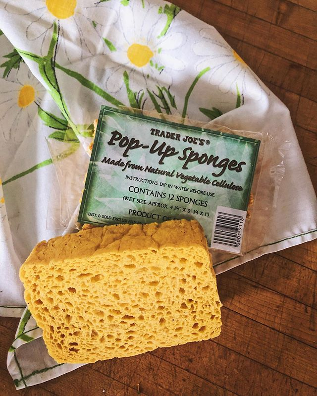 ✅Greener cleaning tip:✅ Ditch your single-use sponges!! I get it, sponges can be one of dirtiest things in our homes, as they can harbor and hold dangerous bacteria and germs. But, that's not all, typical sponges also contain oil based, environmentally destroying plastics too. Tossing just one sponge into the trash will take up landfill space for up to 52,000 years to breakdown. One quick cleaning frenzy can have a life time of effects on the planet. ♻️ It can be hard to find #plasticfree and #plantbased alternatives for cleaning, but it's not impossible! Which is why I was thrilled to see @traderjoes carrying a #sustainable option! These eco-friendly sponges are made from vegetable cellulose that is 100% organic plant derived material, making them #biodegradable. When finished with mine, I simply toss into my compost where they can properly breakdown and decompose without emitting toxins into the earth or atmosphere. These are super affordable (maybe $5-$6) for a pack of 12! Just add water and they expand for normal use. I love seeing more alternatives in  neighborhood markets for greener cleaning! ♻️ #wastelesswednesday #greencleaning #toxicfreehome #zerowaste #plasticfreehome #ecofriendly #ecoconscious #ecoblogger #earthfirst #environmentallyfriendly #chemicalfreecleaning #sustainability #sustainableliving #oneworld #trashfree #protectmotherearth #climatechange #climatecrisis #protectthesacred #compost #consciousliving #consciousconsumer #greenliving