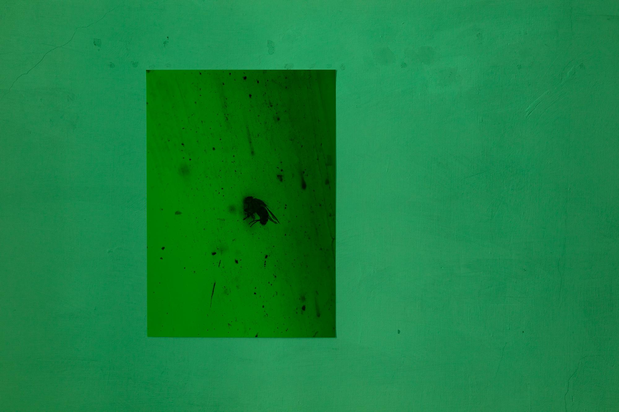 2019_03_14_JieunLim_ErmesErmes_kunstdokumentationcom_006_web.jpg