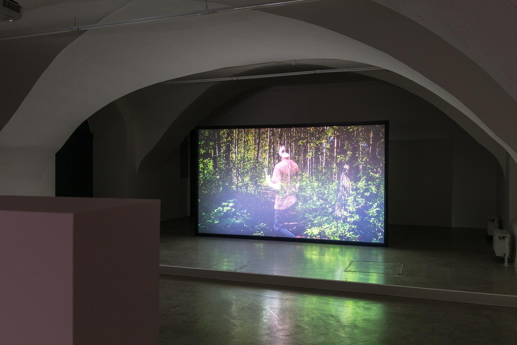 2019_03_11_Grazer Kunstverein_052_web.jpg