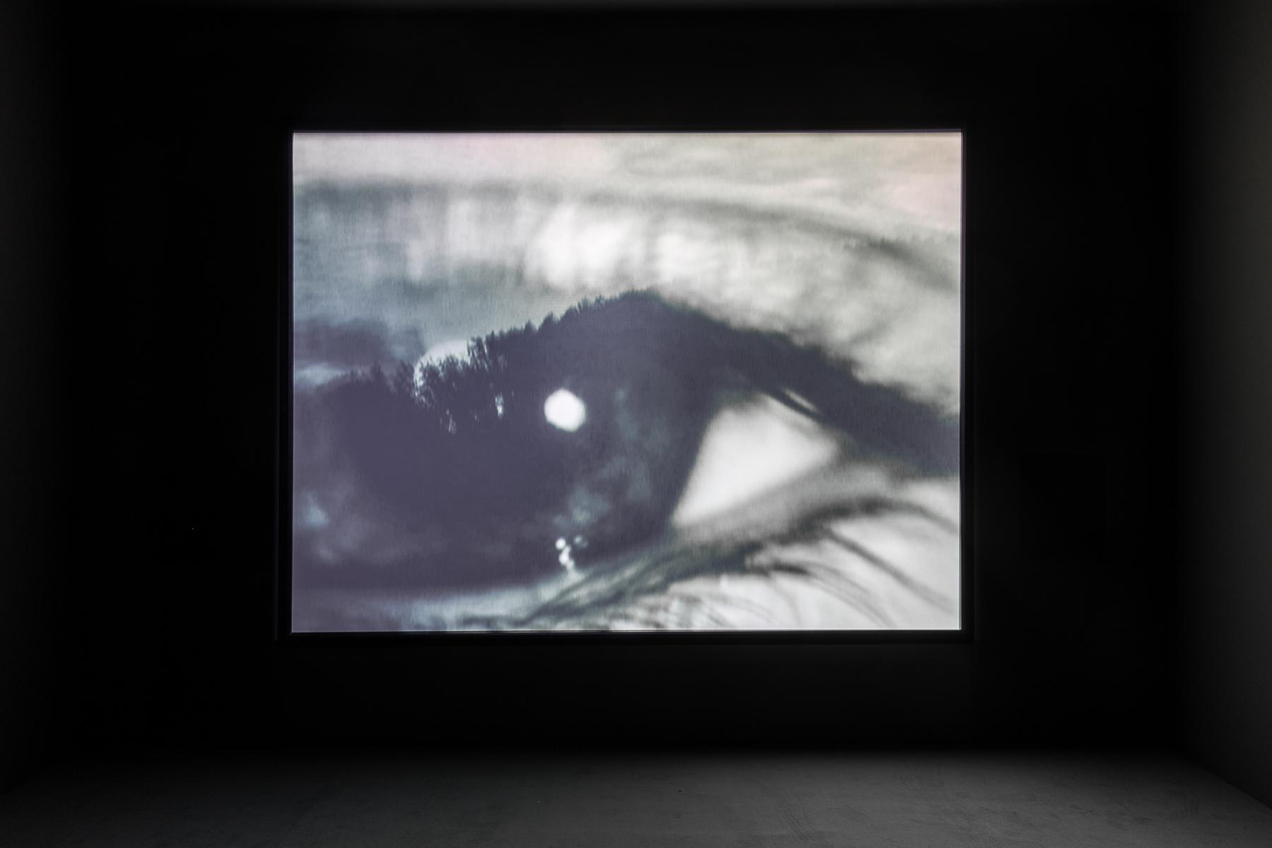 2019_03_11_Grazer Kunstverein_057_web.jpg