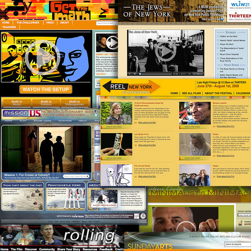 Screen grabs from sites produced for local New York markets and WNET educational initiatives