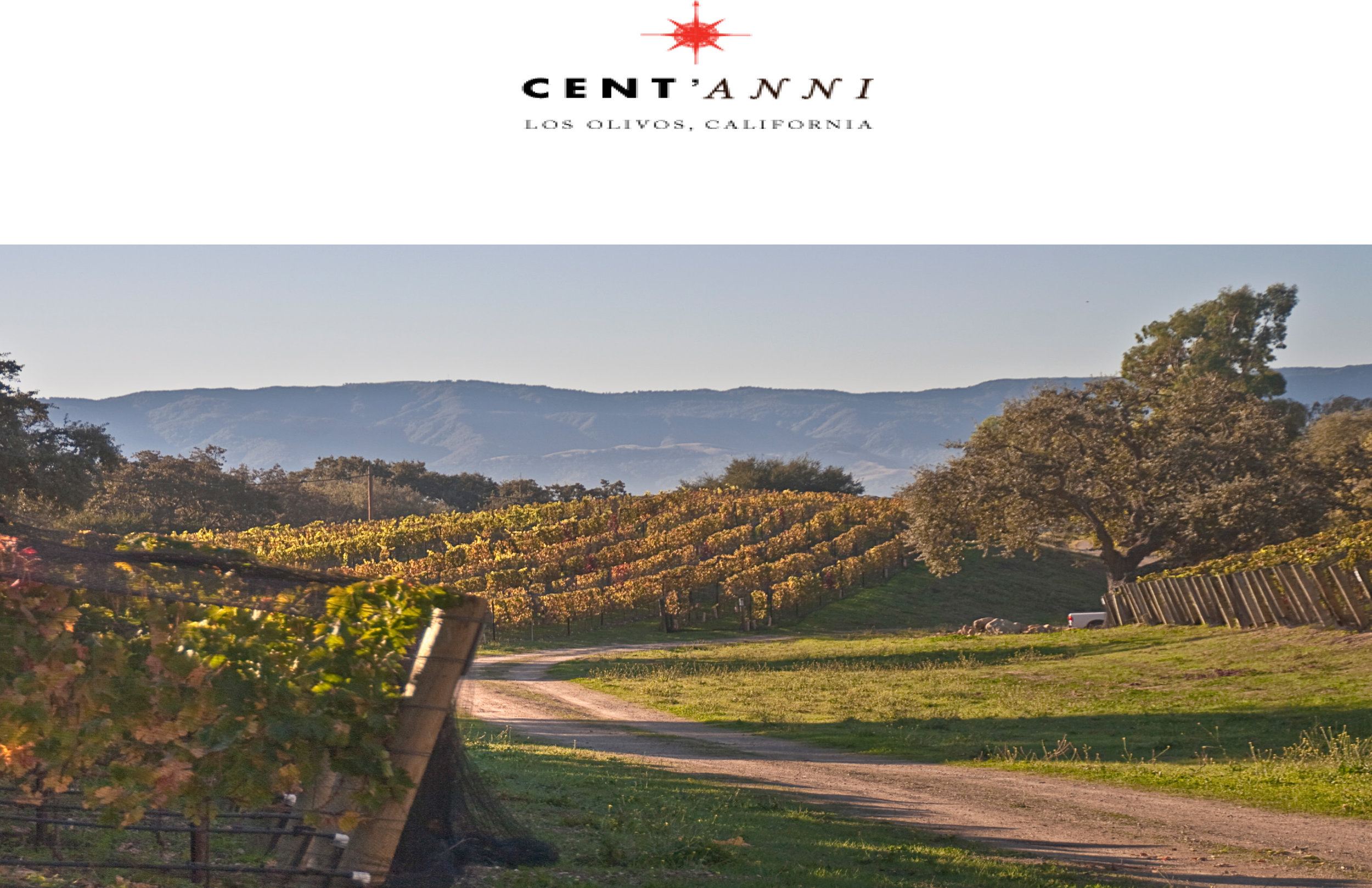 Brochure_Centanni-Vineyard-V5-1.jpg